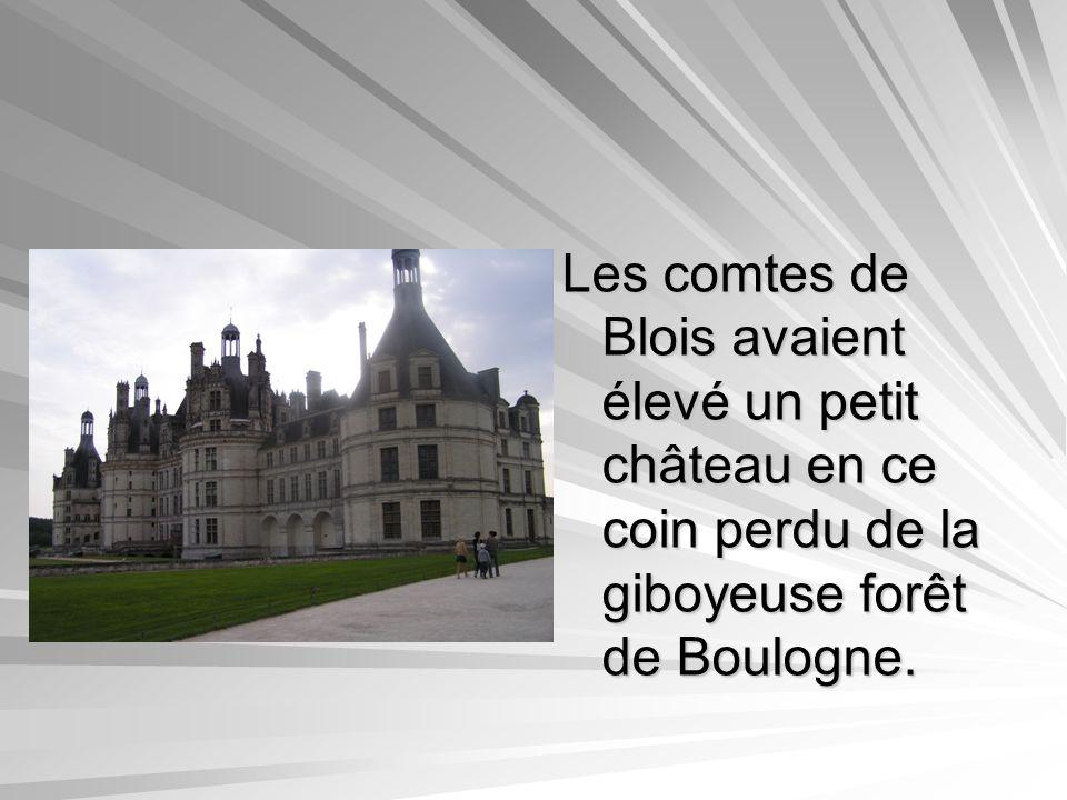 Les comtes de Blois avaient élevé un petit château en ce coin perdu de la giboyeuse forêt de Boulogne.