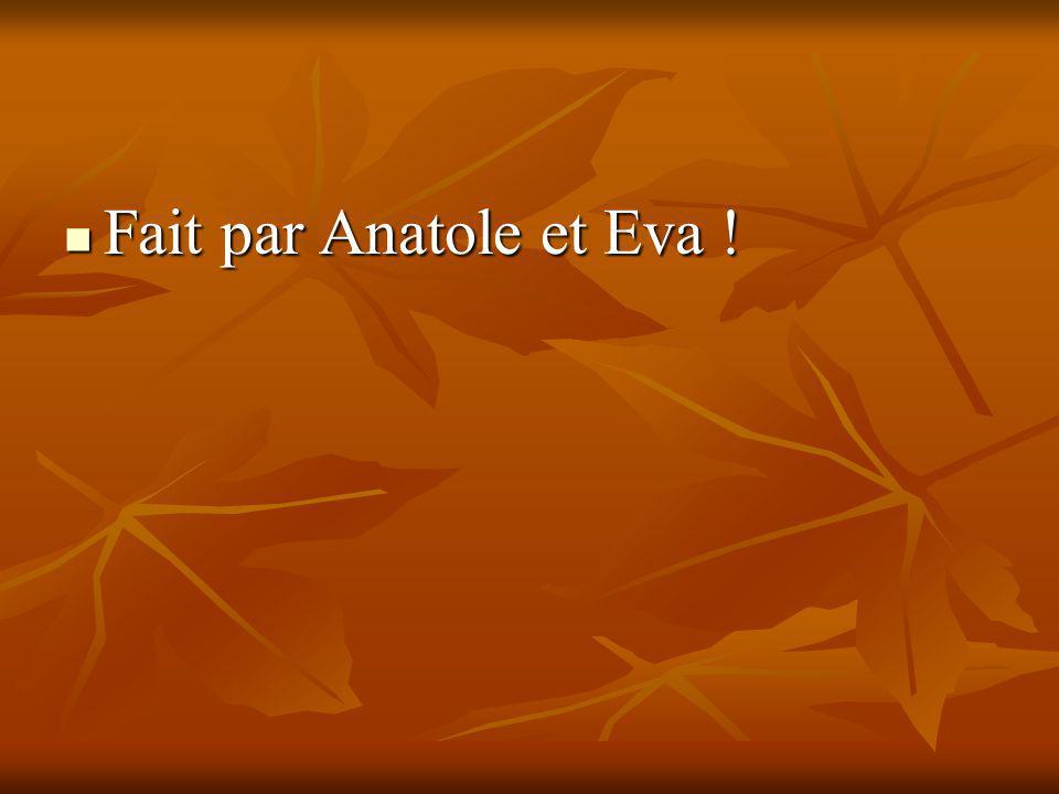 Fait par Anatole et Eva !