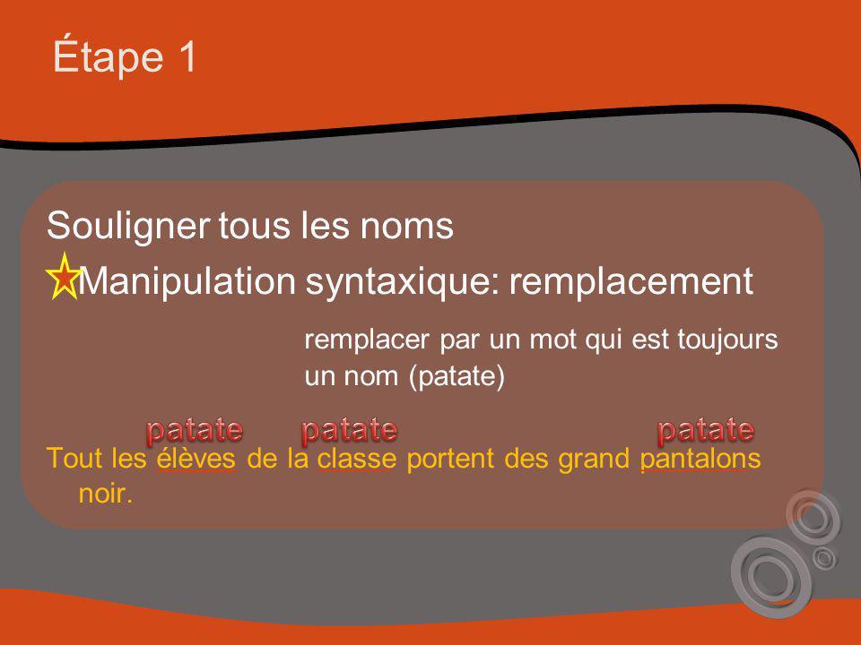 Étape 1 Souligner tous les noms Manipulation syntaxique: remplacement