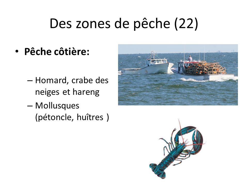 Des zones de pêche (22) Pêche côtière: