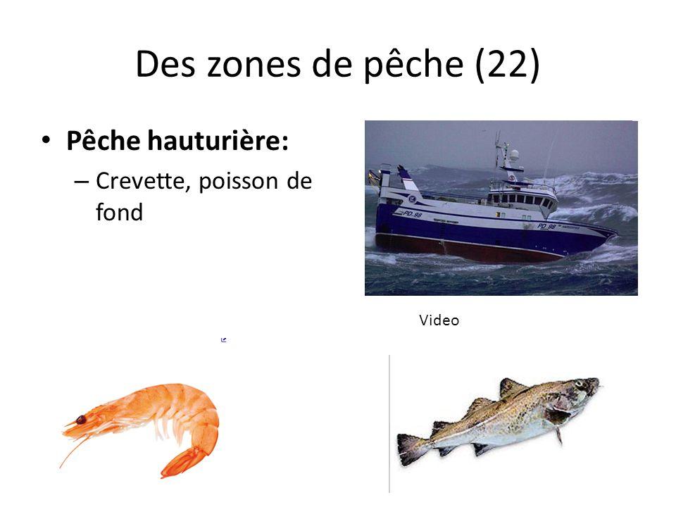 Des zones de pêche (22) Pêche hauturière: Crevette, poisson de fond
