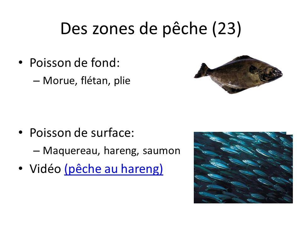 Des zones de pêche (23) Poisson de fond: Poisson de surface: