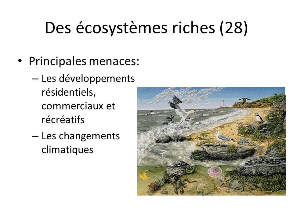 Des écosystèmes riches (28)