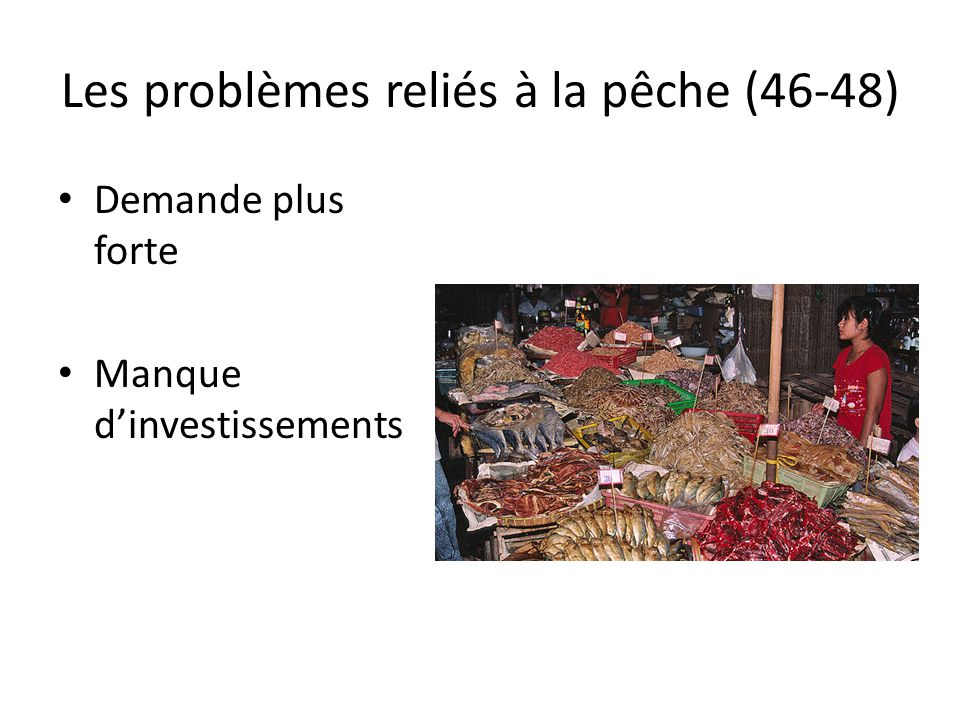 Les problèmes reliés à la pêche (46-48)