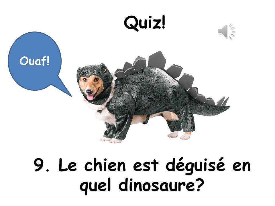 9. Le chien est déguisé en quel dinosaure