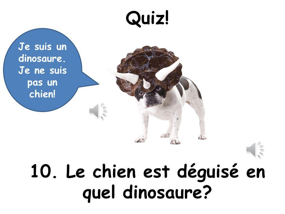 Quiz! 10. Le chien est déguisé en quel dinosaure