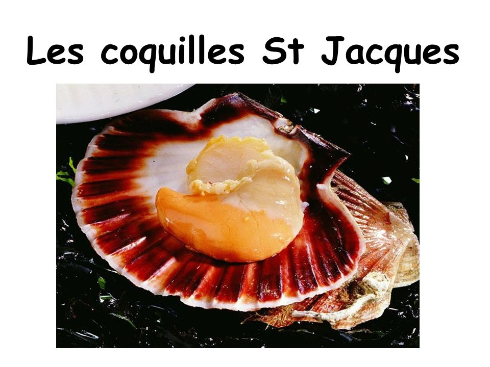 Les coquilles St Jacques