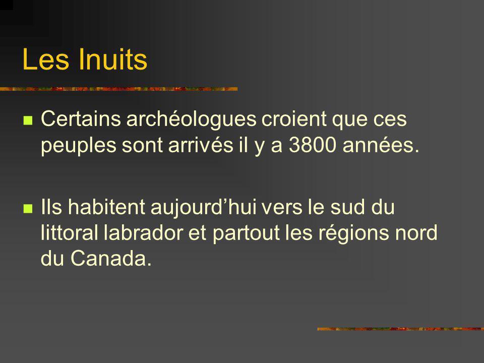Les Inuits Certains archéologues croient que ces peuples sont arrivés il y a 3800 années.