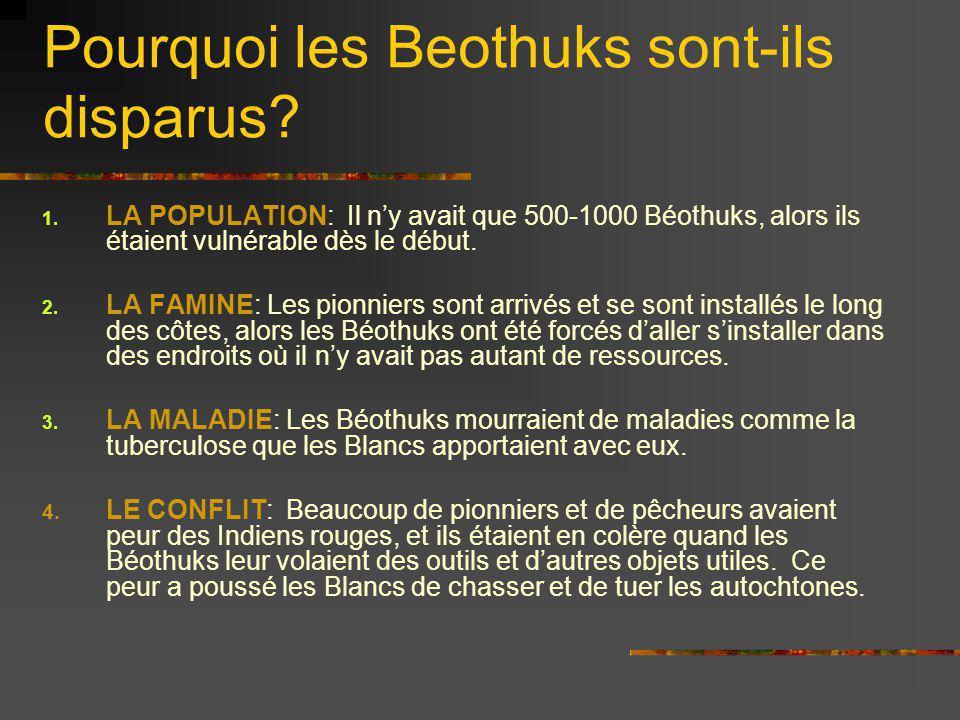 Pourquoi les Beothuks sont-ils disparus