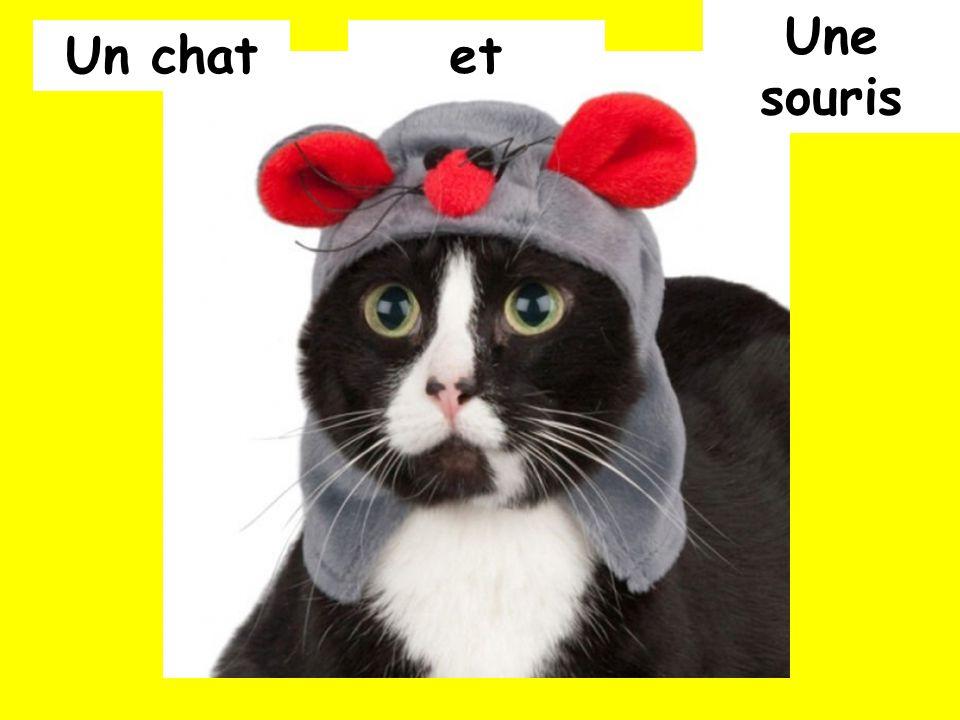 Une souris Un chat et