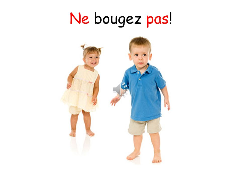 Ne bougez pas! This says don't move! but you could change this to Posez