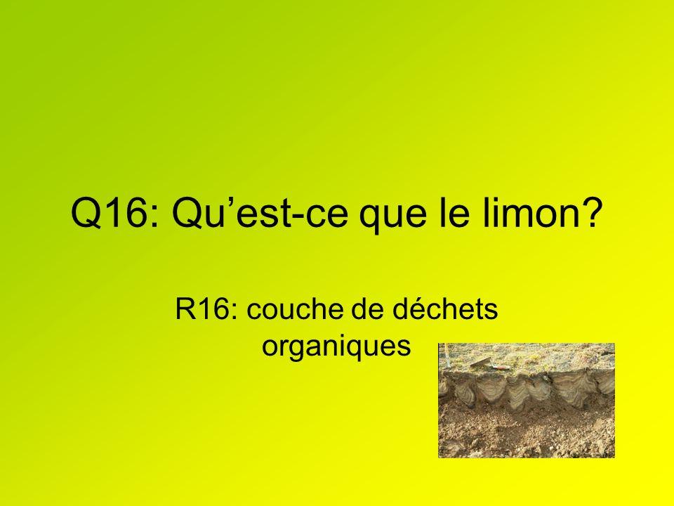 Q16: Qu'est-ce que le limon