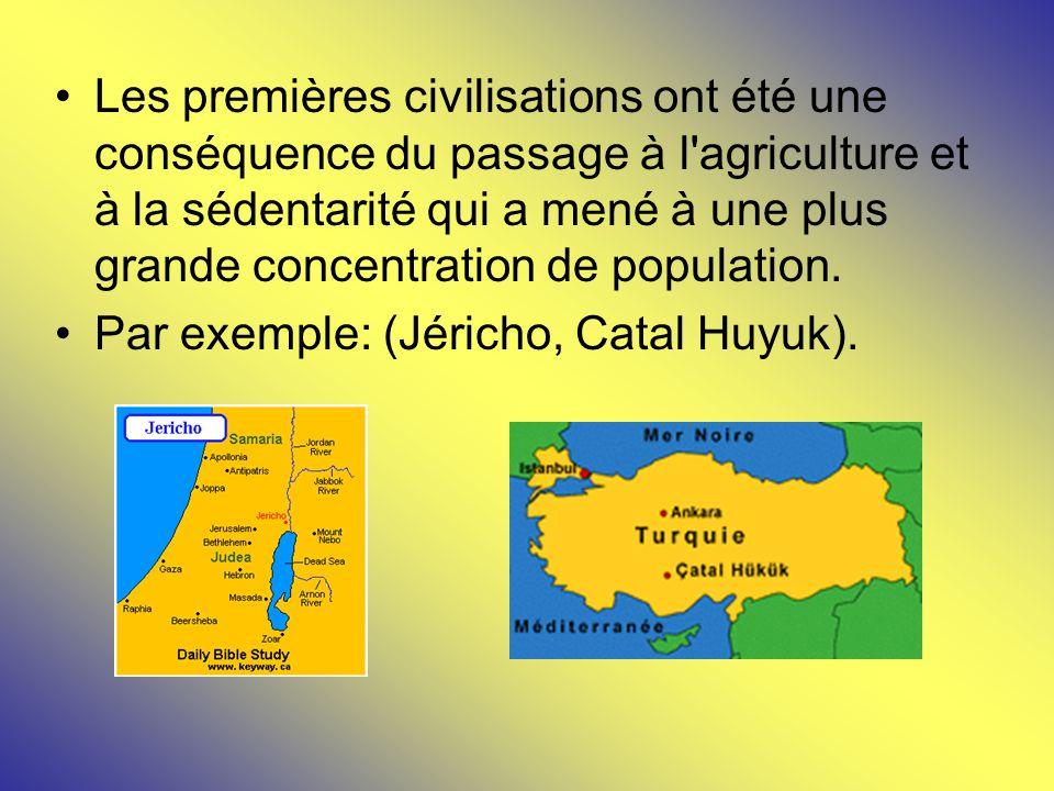 Les premières civilisations ont été une conséquence du passage à l agriculture et à la sédentarité qui a mené à une plus grande concentration de population.