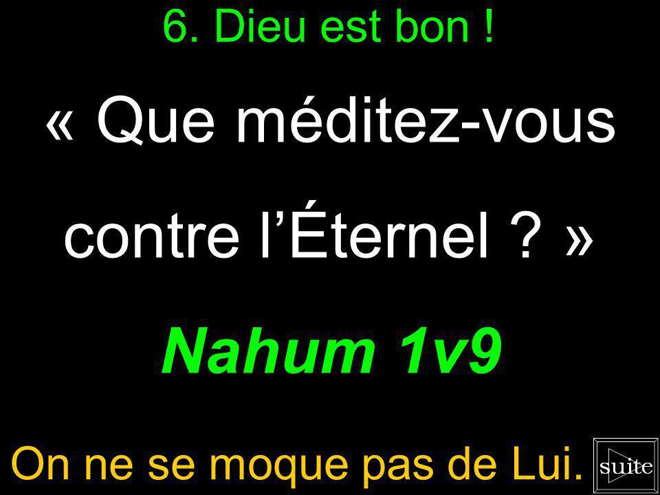 « Que méditez-vous contre l'Éternel » Nahum 1v9 6. Dieu est bon !