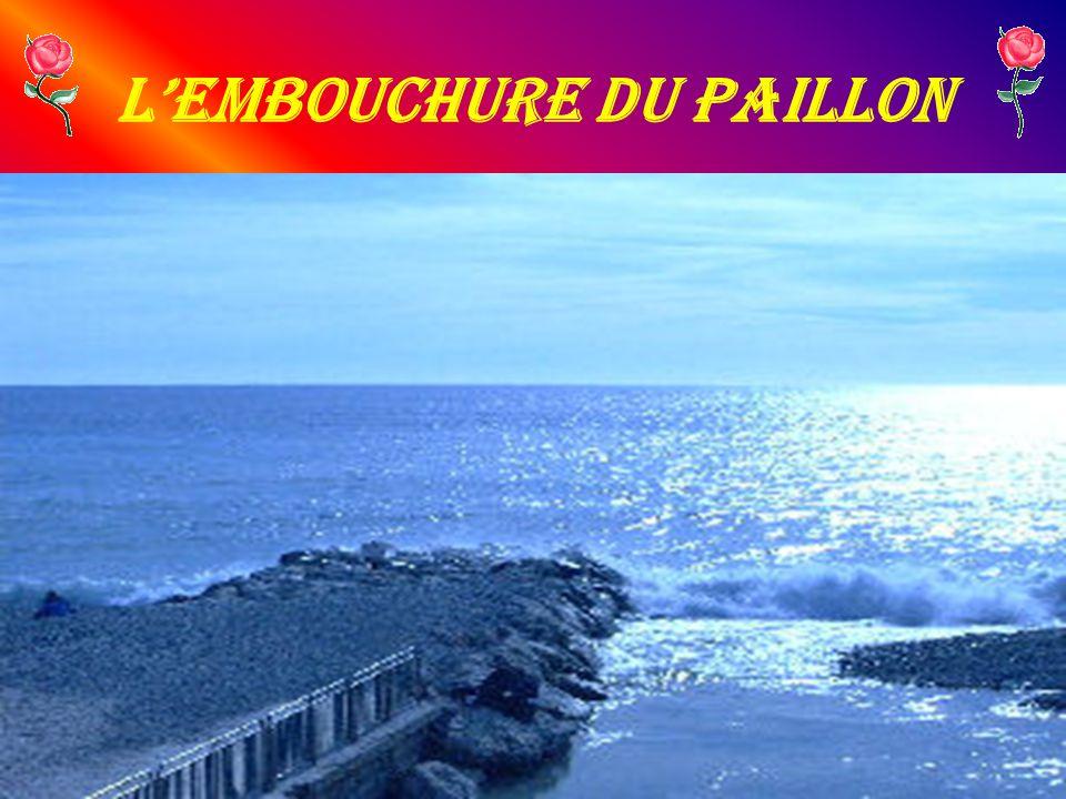 L'Embouchure du Paillon