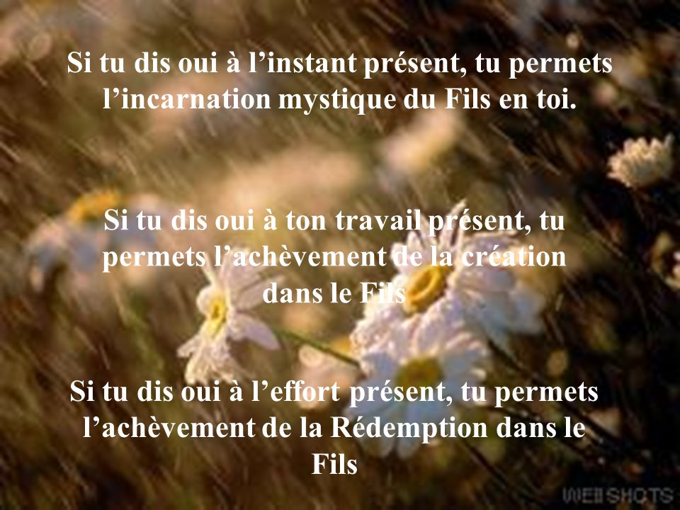 Si tu dis oui à l'instant présent, tu permets l'incarnation mystique du Fils en toi.