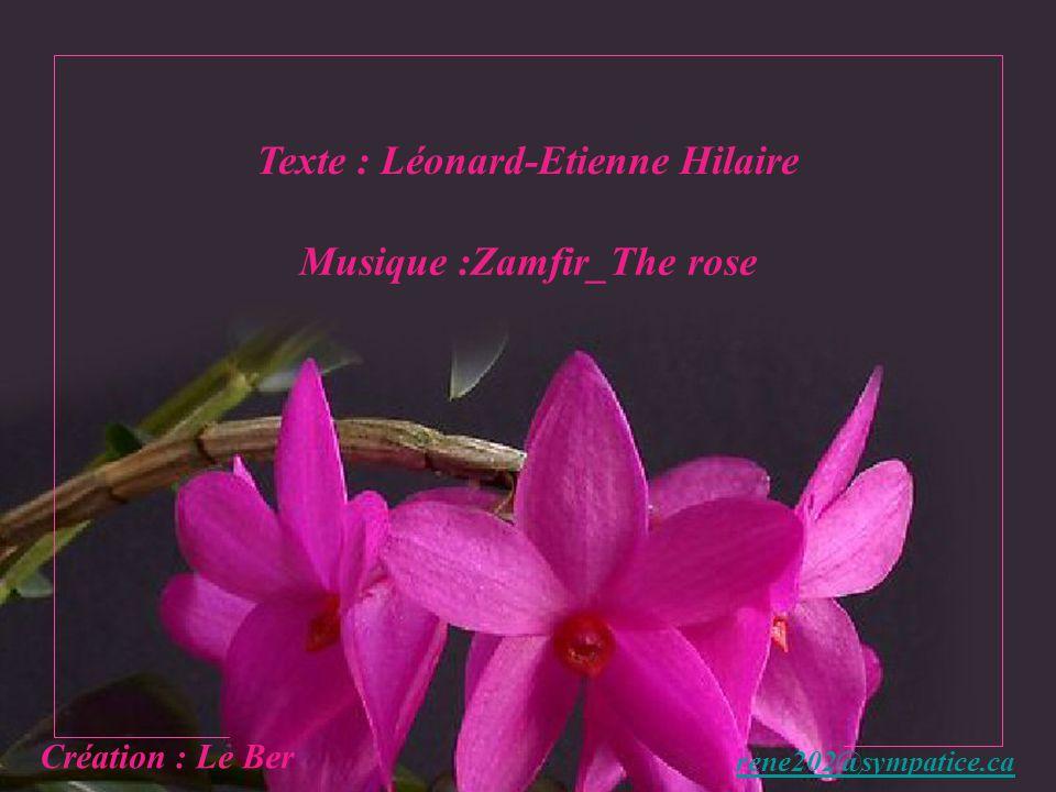 Texte : Léonard-Etienne Hilaire Musique :Zamfir_The rose