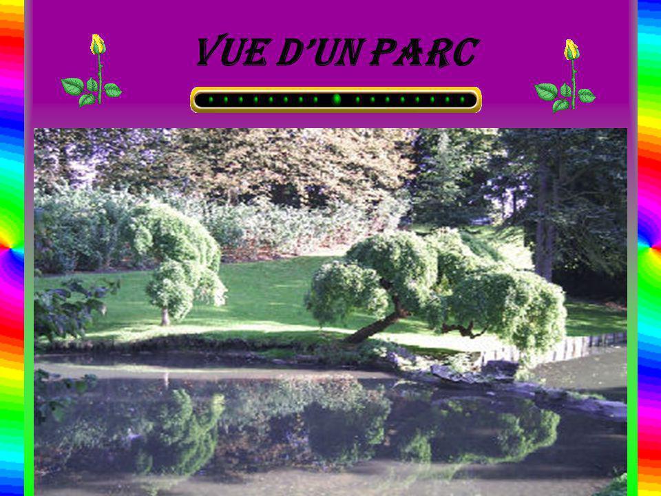 Vue d'un parc
