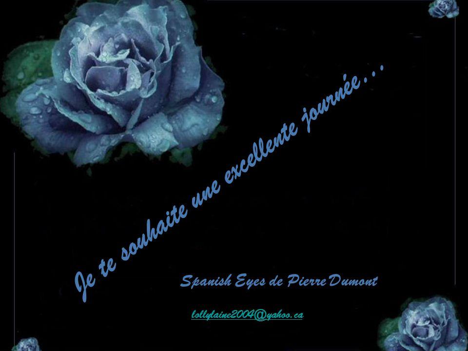 Je te souhaite une excellente journée… Spanish Eyes de Pierre Dumont