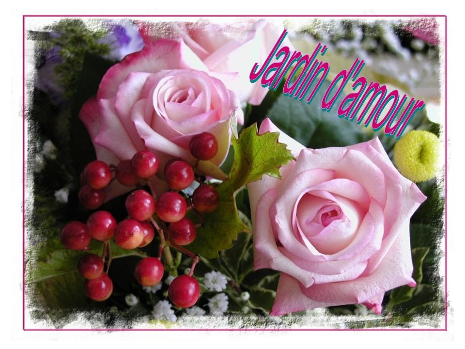 Jardin d amour