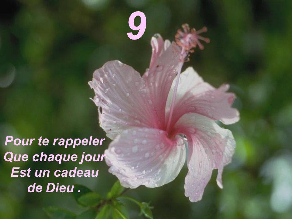 9 Pour te rappeler Que chaque jour Est un cadeau de Dieu .