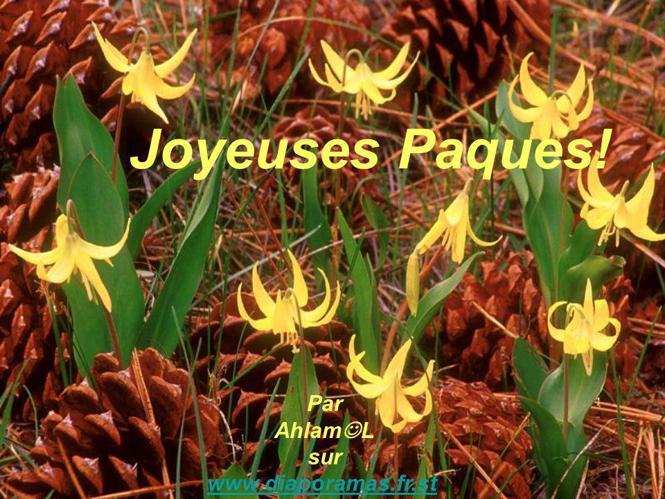 Joyeuses Paques! Par AhlamL sur www.diaporamas.fr.st