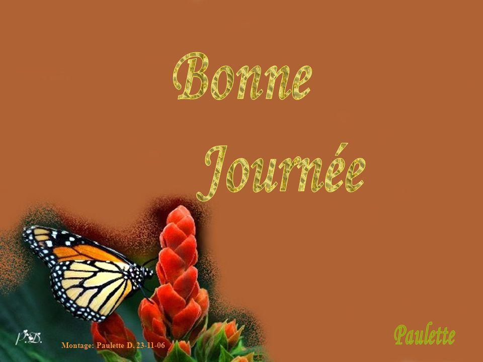 Bonne Journée Paulette Montage: Paulette D. 23-11-06