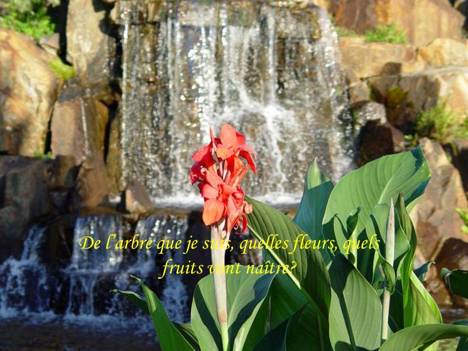 De l'arbre que je suis, quelles fleurs, quels fruits vont naître
