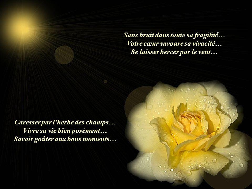 Sans bruit dans toute sa fragilité… Votre cœur savoure sa vivacité…