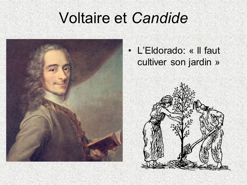 Voltaire et Candide L'Eldorado: « Il faut cultiver son jardin »
