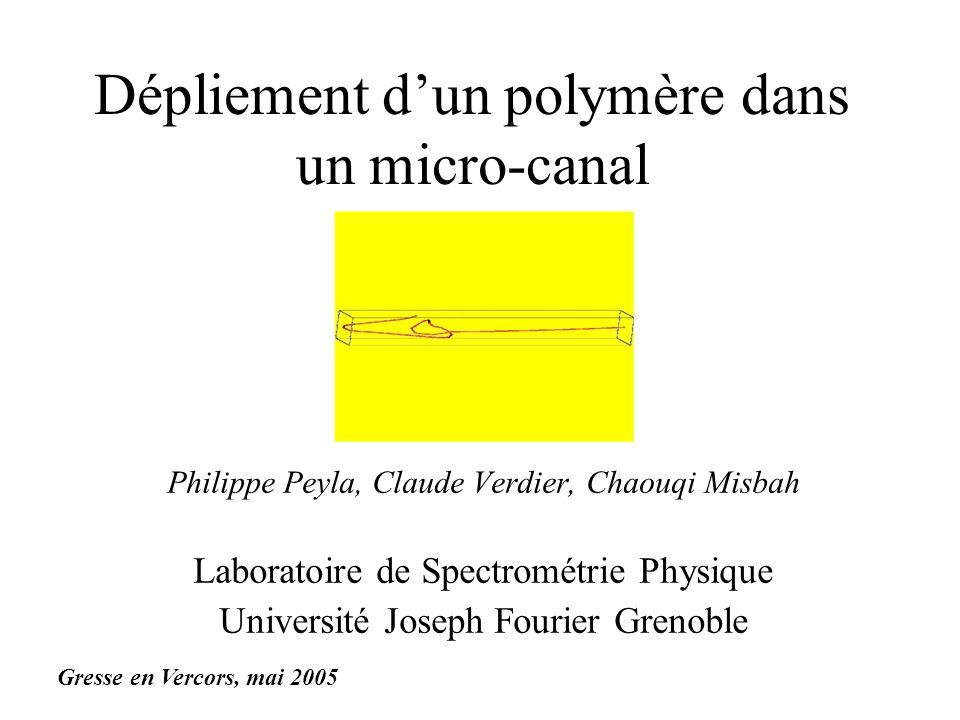 Dépliement d'un polymère dans un micro-canal