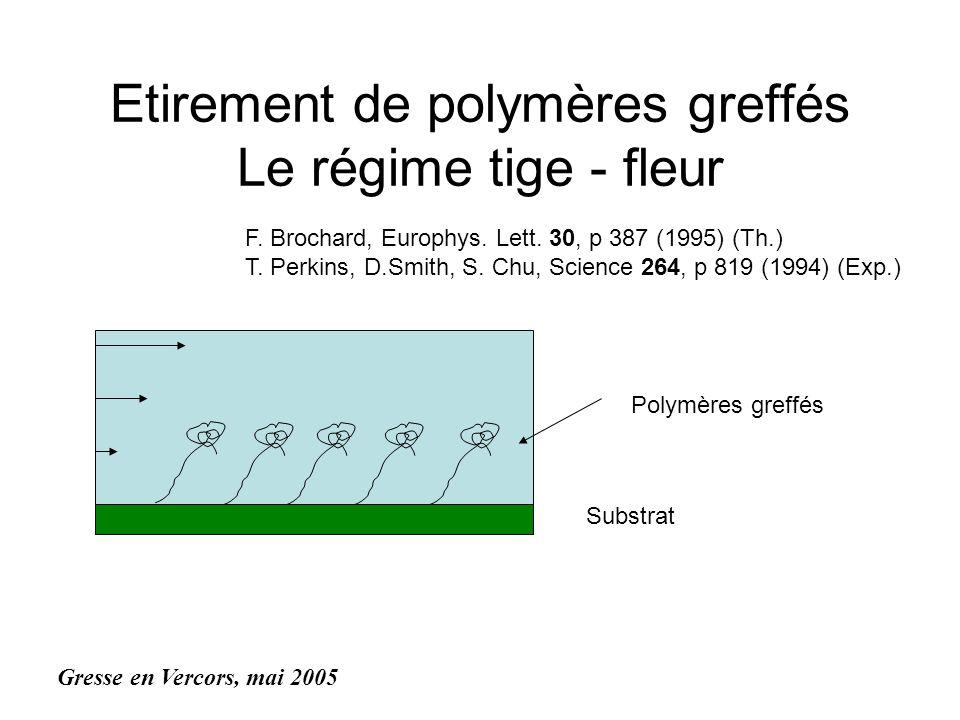 Etirement de polymères greffés Le régime tige - fleur