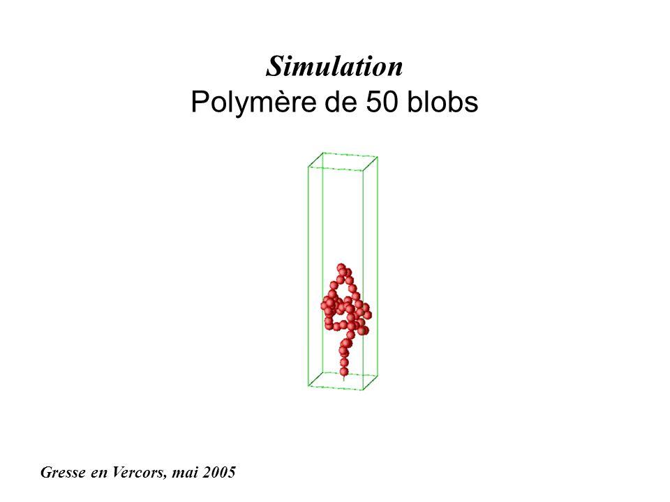 Simulation Polymère de 50 blobs