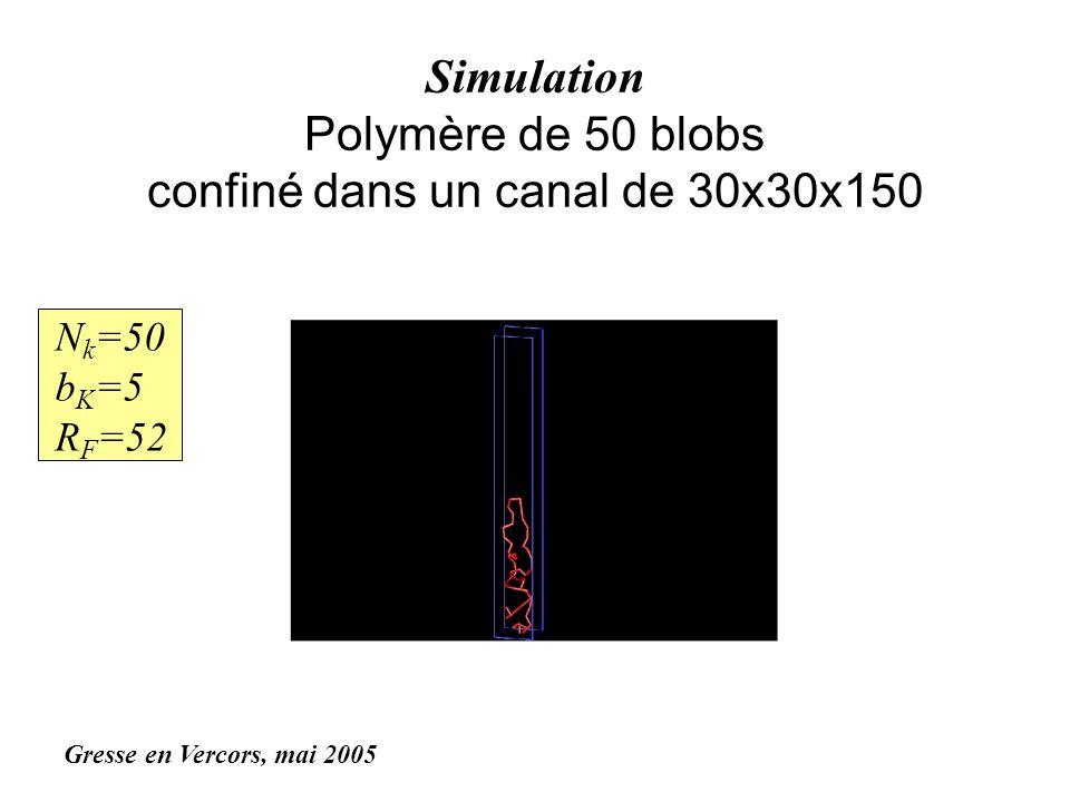 Simulation Polymère de 50 blobs confiné dans un canal de 30x30x150