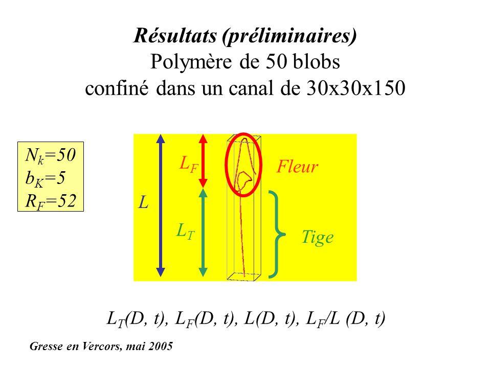 Résultats (préliminaires) Polymère de 50 blobs confiné dans un canal de 30x30x150