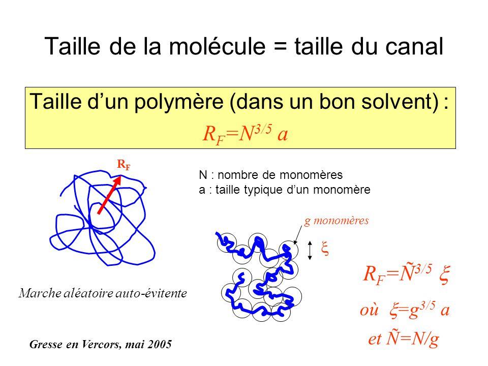 Taille de la molécule = taille du canal