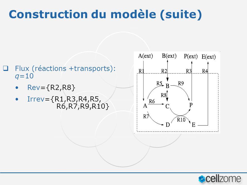 Construction du modèle (suite)