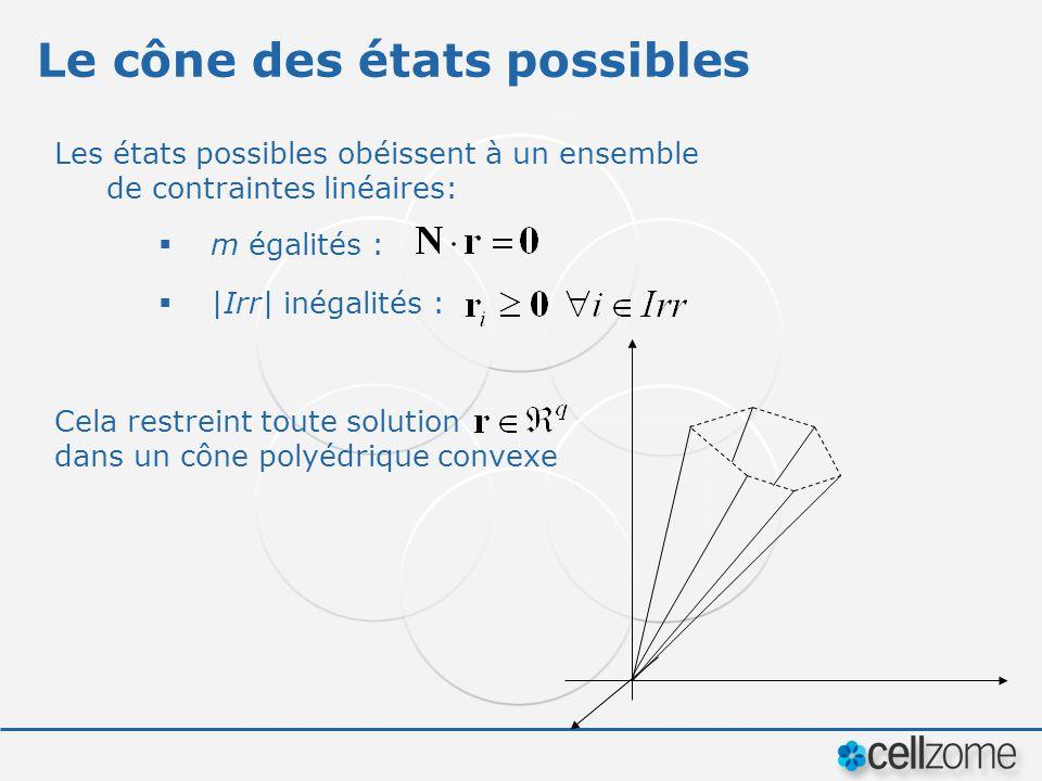 Le cône des états possibles