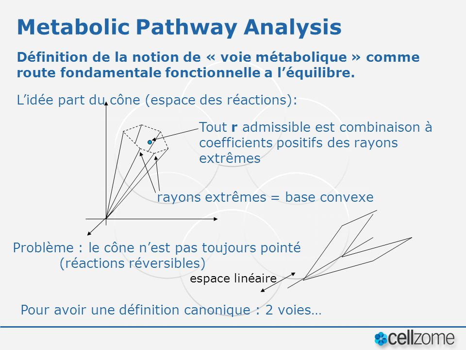Metabolic Pathway Analysis