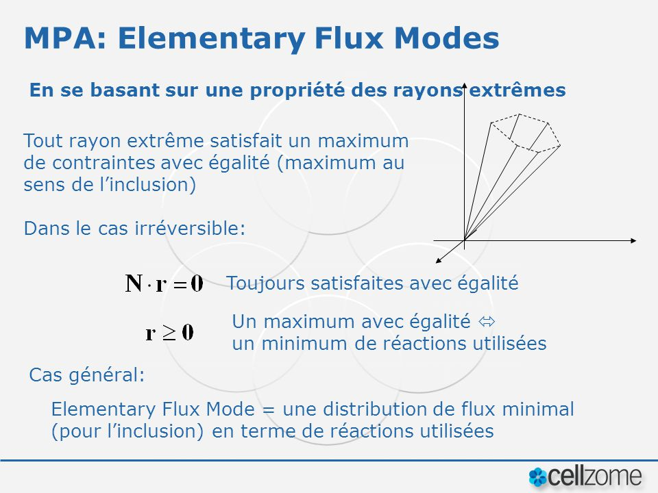 MPA: Elementary Flux Modes