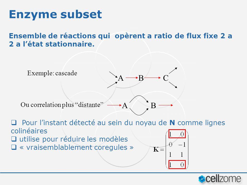 Enzyme subset Ensemble de réactions qui opèrent a ratio de flux fixe 2 a 2 a l'état stationnaire. Exemple: cascade.