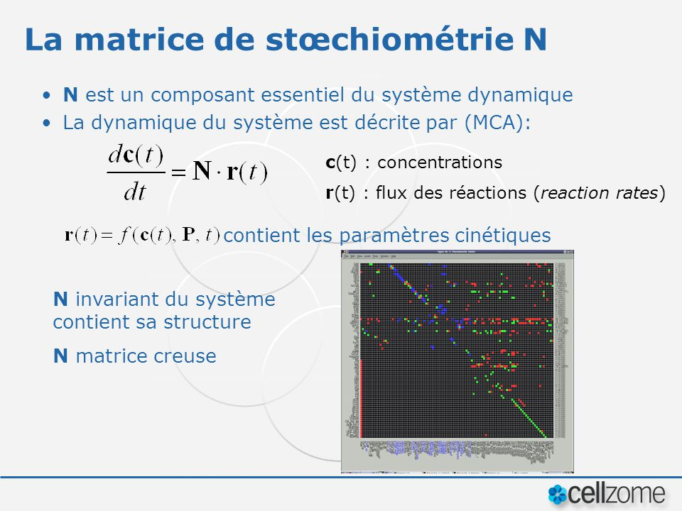 La matrice de stœchiométrie N