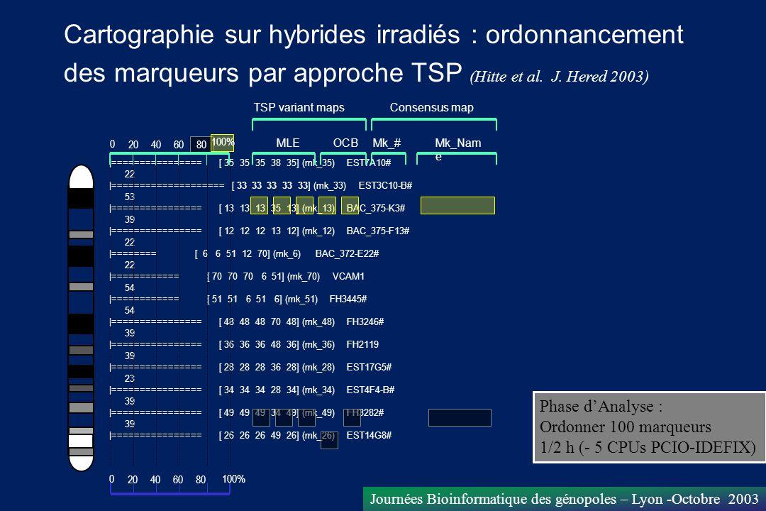 Cartographie sur hybrides irradiés : ordonnancement des marqueurs par approche TSP (Hitte et al. J. Hered 2003)