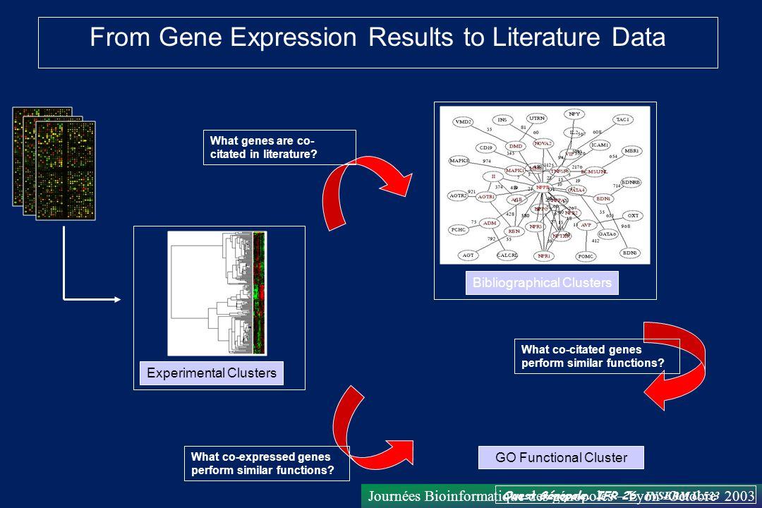 From Gene Expression Results to Literature Data