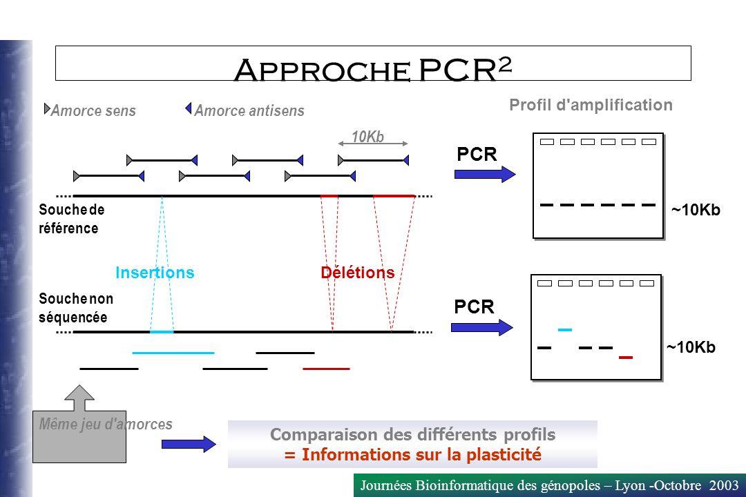 Comparaison des différents profils = Informations sur la plasticité
