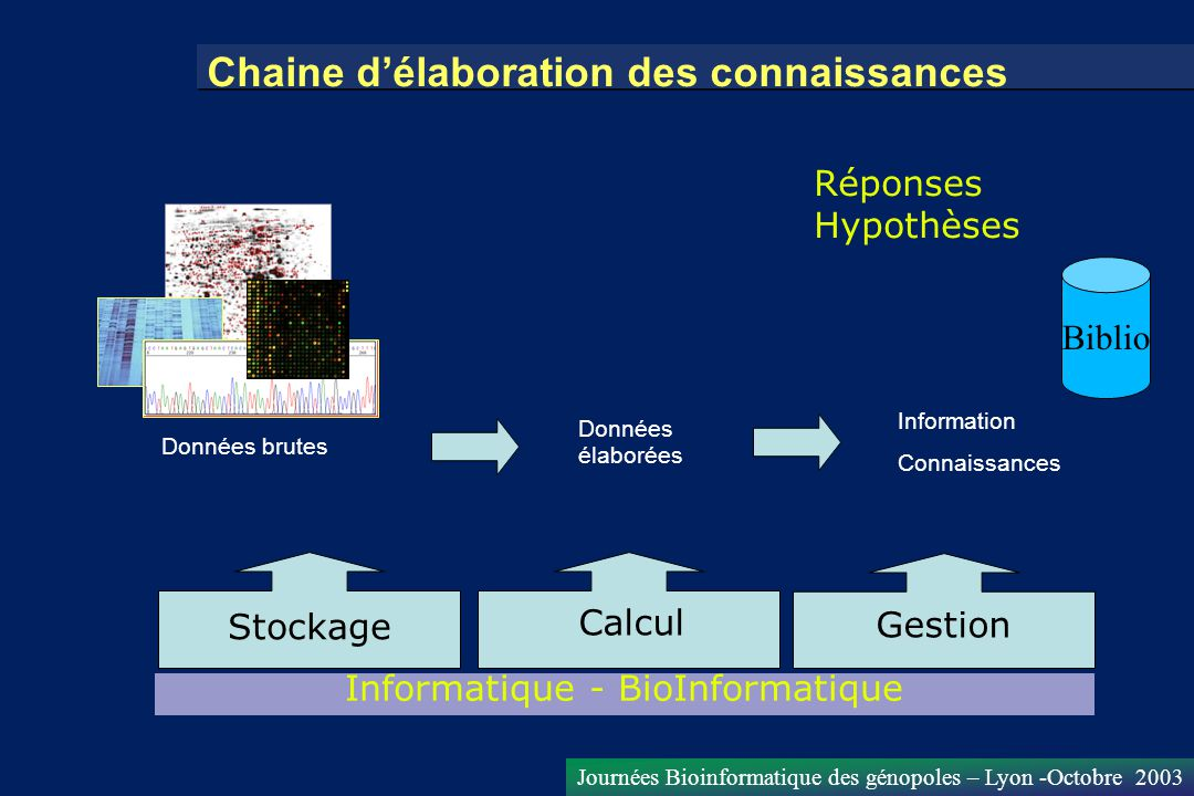 Informatique - BioInformatique