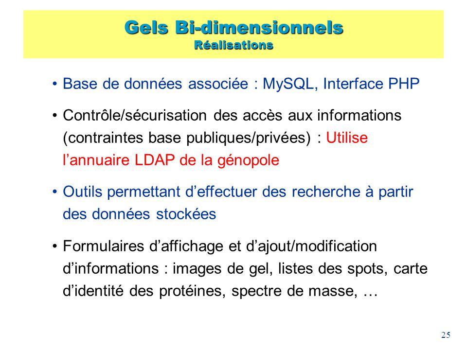 Gels Bi-dimensionnels Réalisations