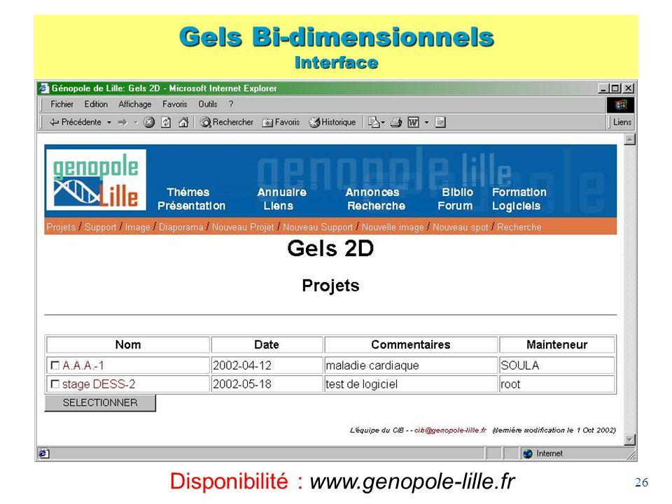 Gels Bi-dimensionnels Interface