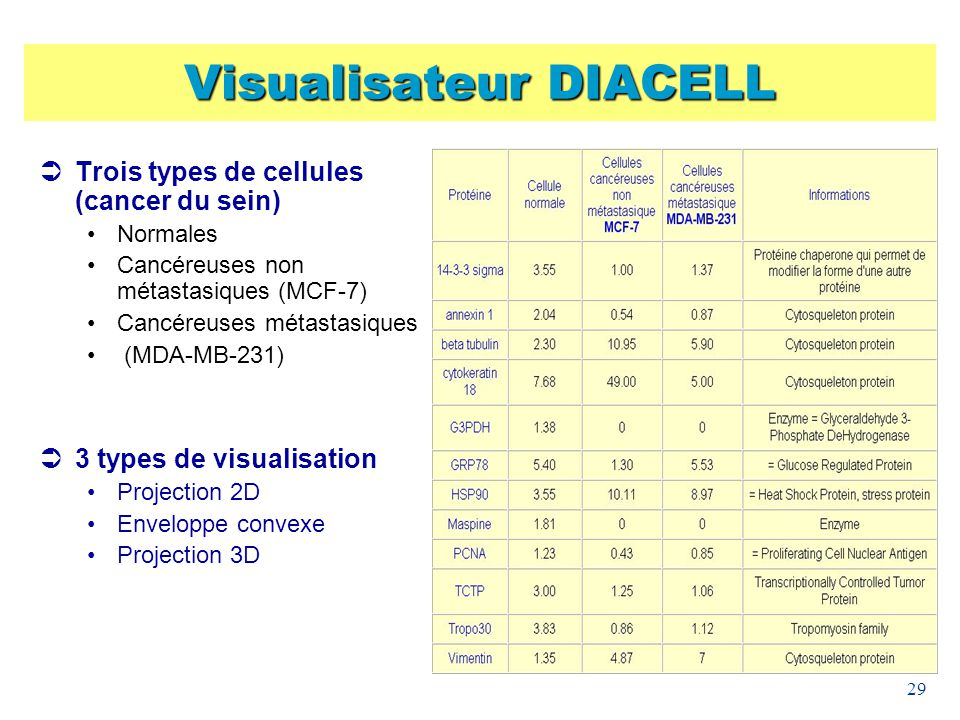 Visualisateur DIACELL