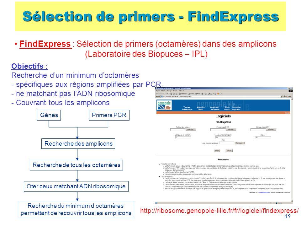 Sélection de primers - FindExpress
